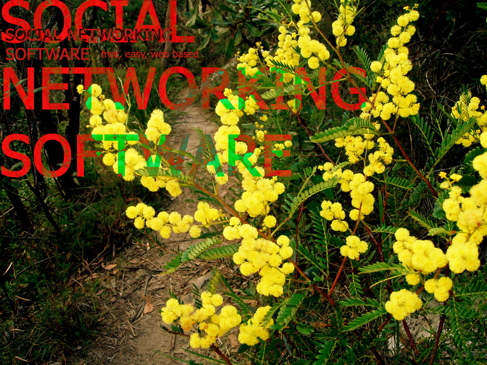 Social Networking Software