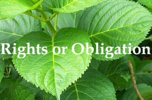 RightsOrObligation