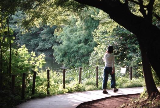 ShakujiiKoen_2010summer